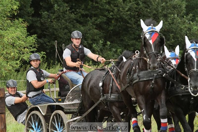 International horse driving championship CAIO in Nebanice, 28–30 July 2016