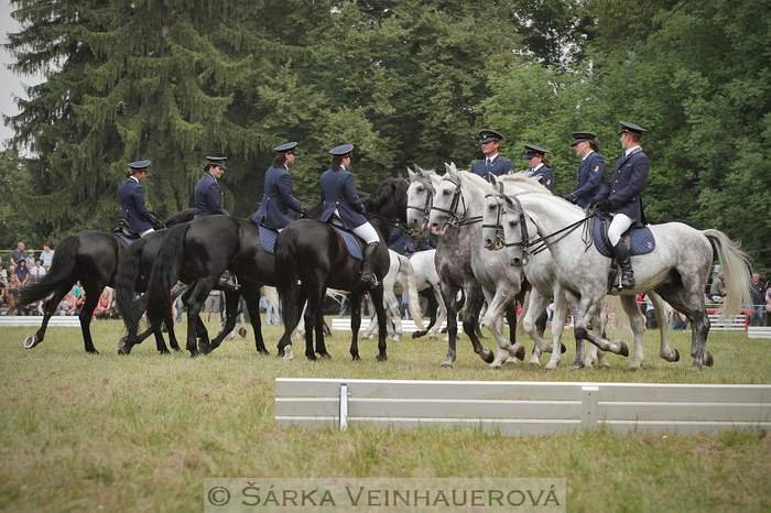 Equestrian Day at the Slatiňany stud – photo gallery II