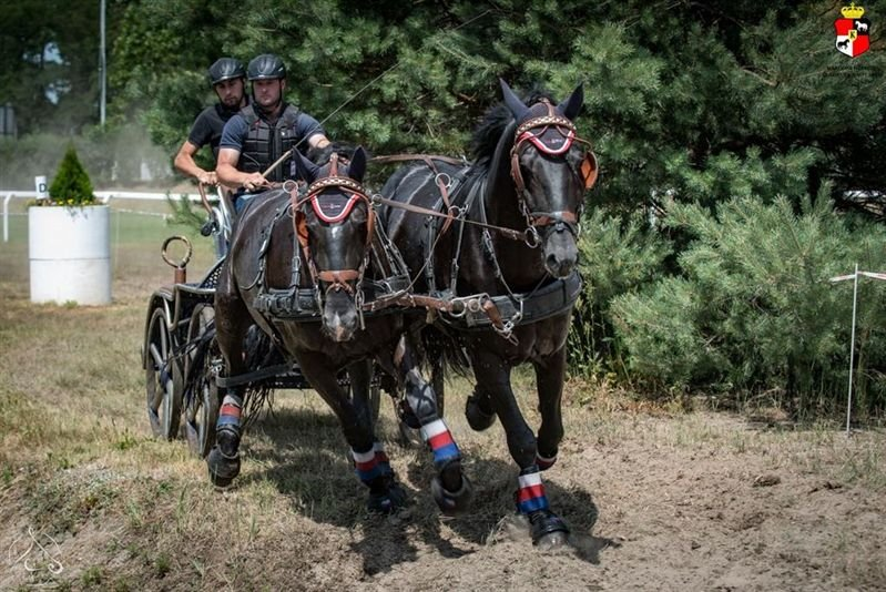 East Bohemian Region horse driving championship, 9–10 July 2016