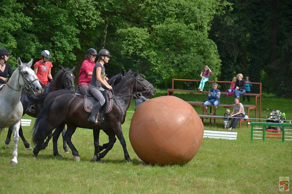 Training and preparation for the Equestrian Day at the Slatiňany stud