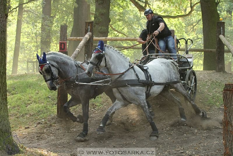 Czech Republic horse driving championship in Heřmanův Městec, 22–25 September 2016