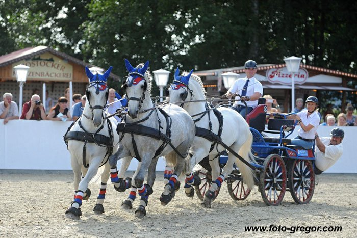 Horse shows at the Neustadt (Dosse) and Redefin studs, 10–11 September 2016