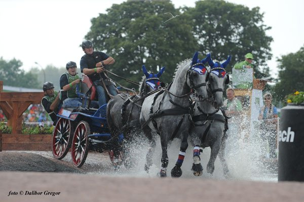 World Equestrian Games 2014 in Normandy – photo gallery II