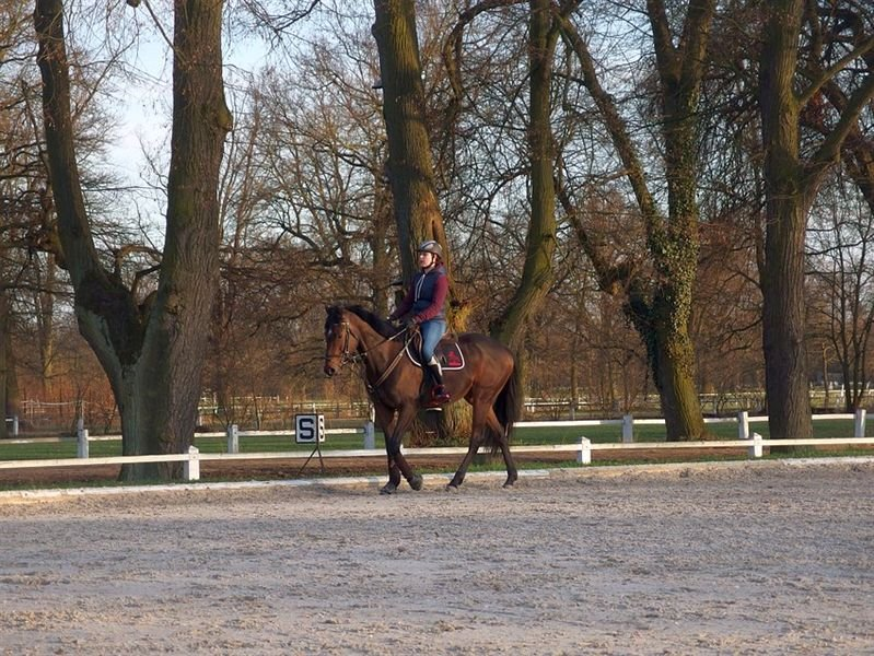 Training in eventing with Jaroslav Hatla, 25–26 March 2017