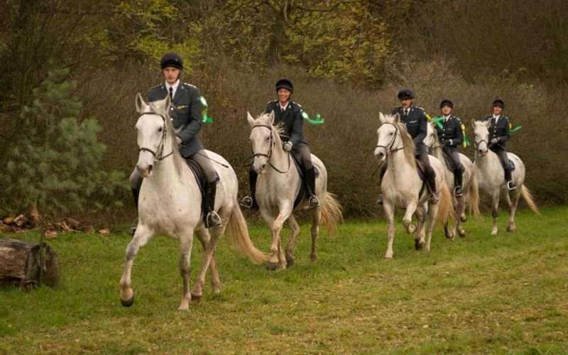 St. Hubertus ride at the National Stud in Kladruby nad Labem, 28 October 2017