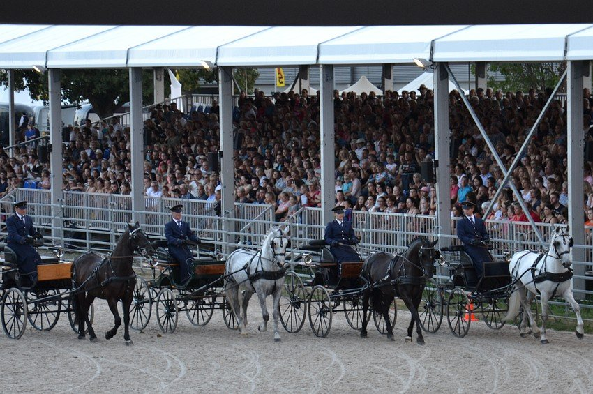 European Horse Fair Eurocheval in Offenburg, 26–29 July 2018