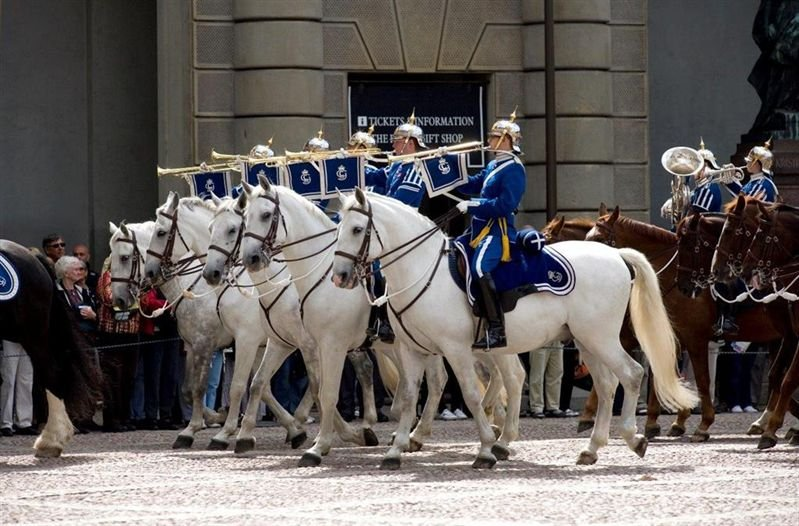 Supporters of the Swedish Mounted Royal Guard visit, 1 October 2016