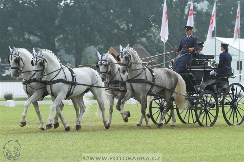 Breda World Driving Championship 2016 – Saturday – dressage and cross-country marathon, 3 September 2016