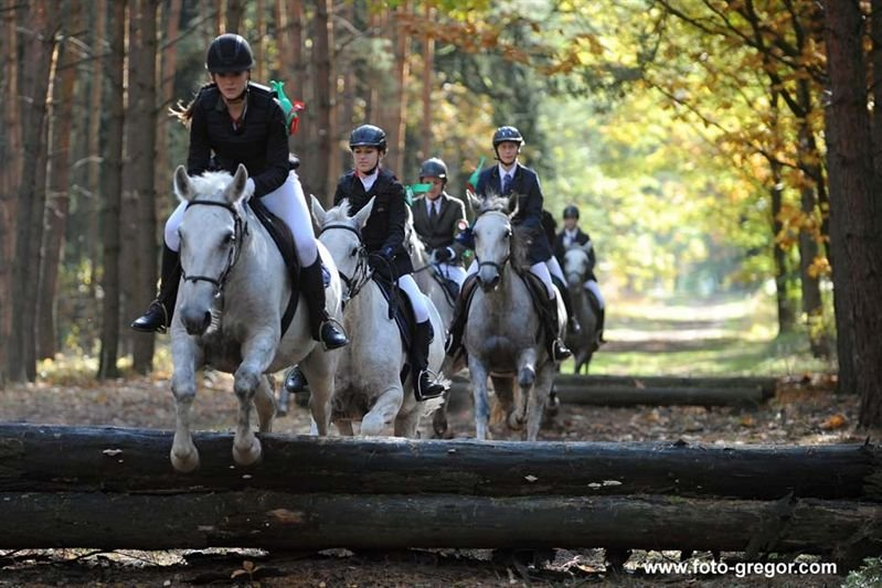 St. Hubertus ride at the National Stud in Kladruby nad Labem, 14 October 2017