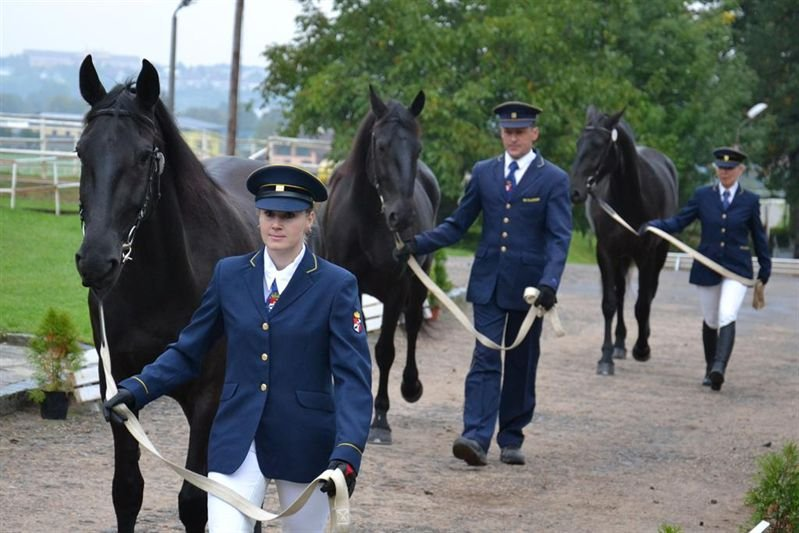 Kladruber mares' performance testing at the Kladruby nad Labem stud, 19–20 September 2017