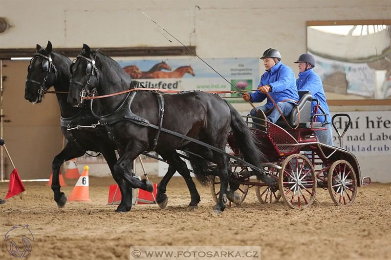Indoor horse driving competition in Slatiňany, 12 February 2017